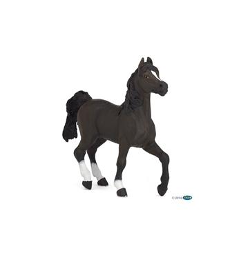 Слика за категорија Коњи