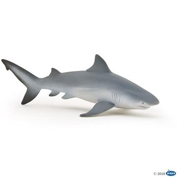 Слика на Бик ајкула