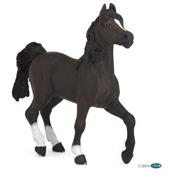 Слика на Арапски коњ