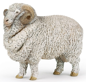 Слика на Мерино овца