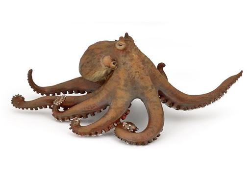 Слика на Октопод