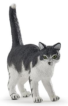 Слика на Мачка