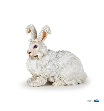Слика на Ангорски зајак